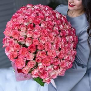 Букет 101 роза с каймой R1251