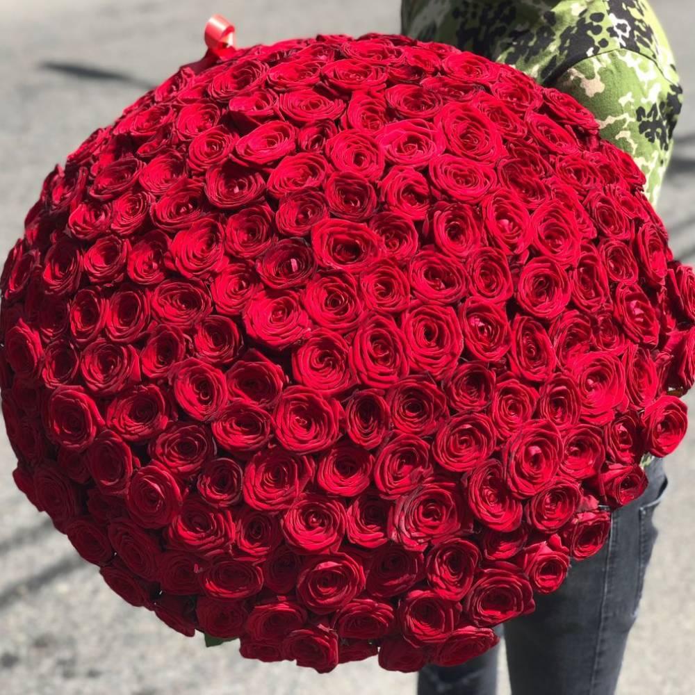 Интересные факты самый большой букет роз