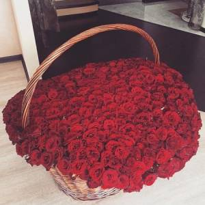 501 красная роза, букет в корзине R926