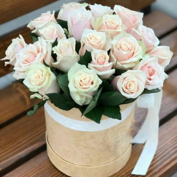 21 нежная роза в белой коробке R039
