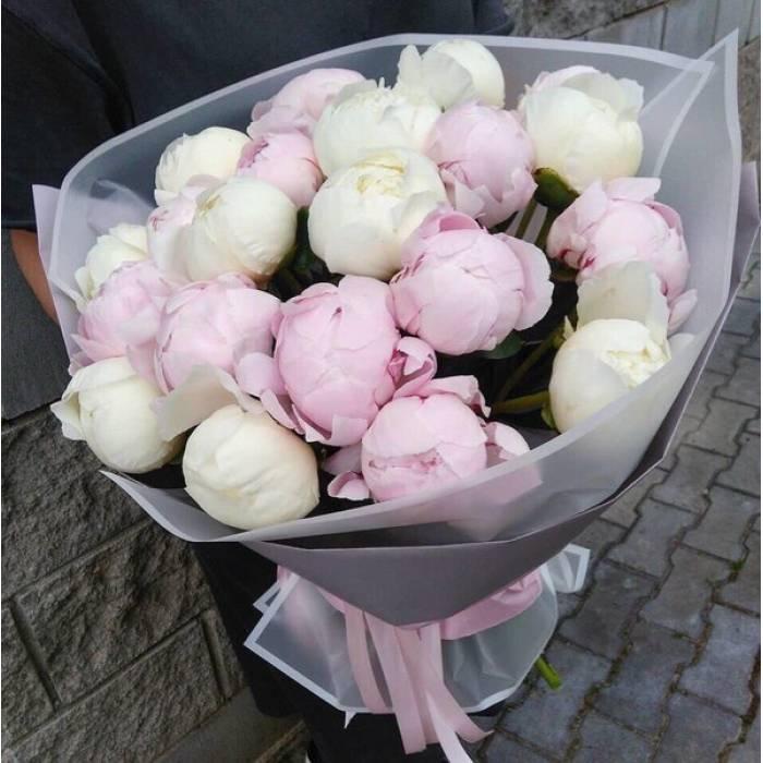 Букет 19 пионов белые и розовые R1096