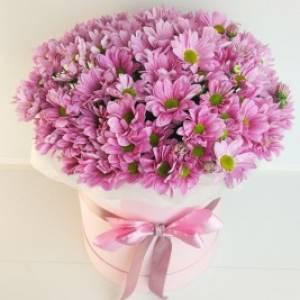 Коробка 11 веток розовой хризантемы R1136