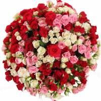 Букет 101 разноцветная кустовая роза R008