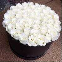 51 белая роза в черной коробке R024