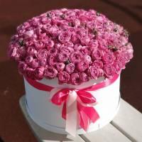 51 кустовая пионовидная роза в коробке R019