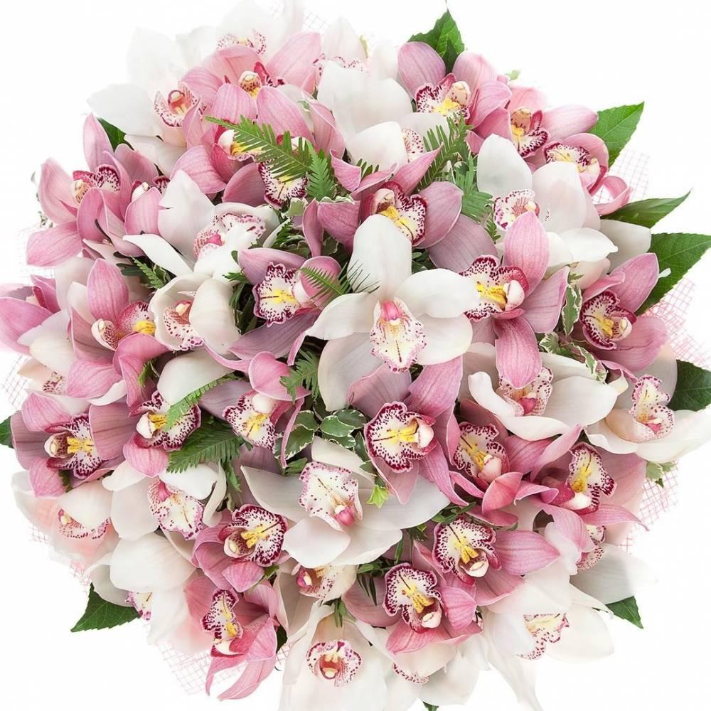 Купить букет с орхидеями фото, букетов цветов саратов